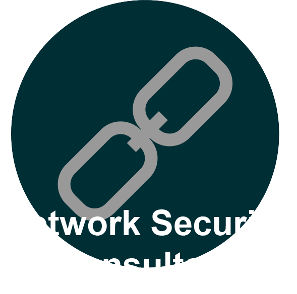 Icon Network Security Consultant
